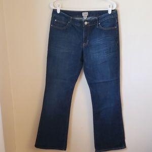 Gap Factory 1969 Jeans